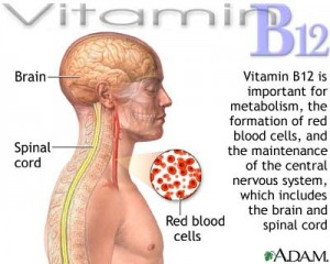 Vitamin B12 help in hair growth